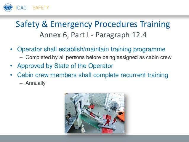 secure safe professional s1 manual