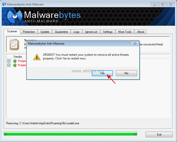 how to remove trojan zbot manually