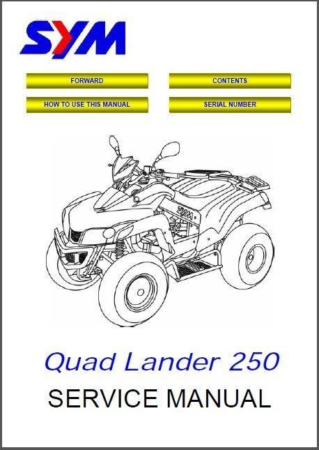 sym firenze 250 service manual